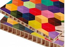 Carton Falconboard